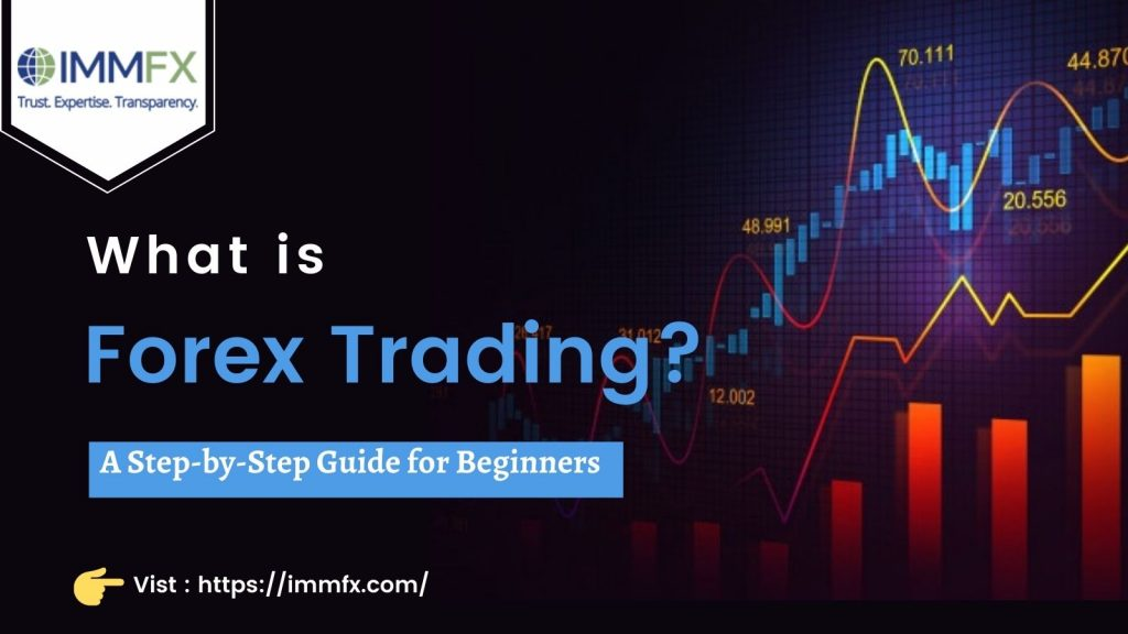 IMMFX - what is forex trading? A step-by-step guide for beginners.